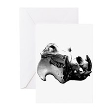 Hippopotamus Skull Greeting Cards (Pk of 10)