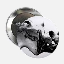 Hippopotamus Skull Button