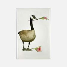 Canada Goose Rose Rectangle Magnet