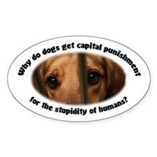 Capital Punishment Decal