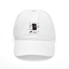 Rottie 1 Baseball Cap