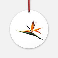 Bird of Paradise Flower Ornament (Round)