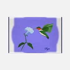 """Hummingbird"" Rectangle Magnet (10 pack)"