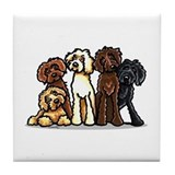 Labradoodle lover Drink Coasters