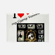 Cute Gypsy vanner horse Rectangle Magnet