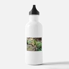 Iguana Water Bottle