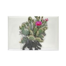 Nevada cactus Rectangle Magnet