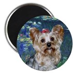 Lilies5 - Yorkie #13 Magnet
