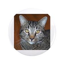 """Tabby Cat 3.5"""" Button"""