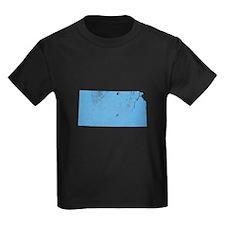 Vintage Grunge Baby Blue Blue T