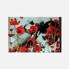 Audrey in Poppies Rectangle Magnet (10 pack)
