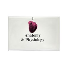I Love Anatomy & Physiology Rectangle Magnet