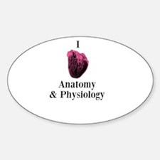 I Love Anatomy & Physiology Decal