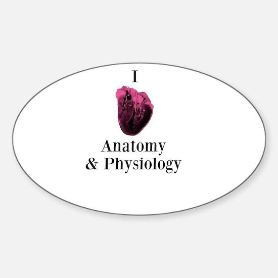 I Love Anatomy & Physiology Sticker (Oval)