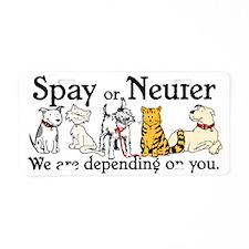 Spay or Neuter - Depending On Aluminum License Pla