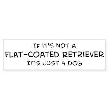 Flat-Coated Retriever Bumper Bumper Sticker