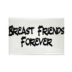 Breast Friends Forever Rectangle Magnet (100 pack)