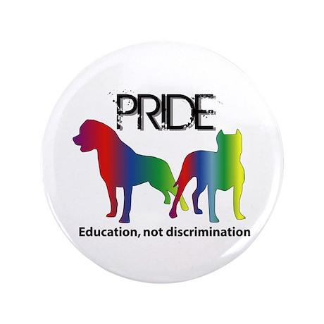 """Pride 2011 3.5"""" Button"""