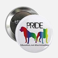 """Pride 2011 2.25"""" Button"""