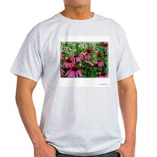 Butterfly on Echinacea Ash Grey T-Shirt