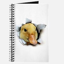 Duckling Burster Journal
