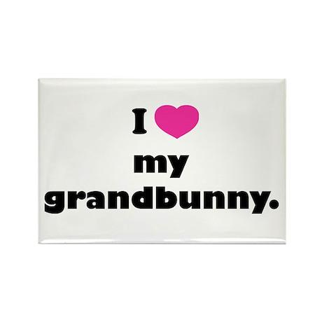 I love my grandbunny. Rectangle Magnet