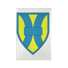 Cute 21st Rectangle Magnet (100 pack)