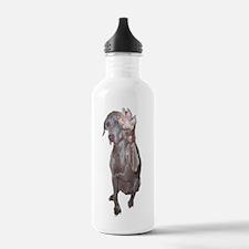 Unique Weimaraner Water Bottle