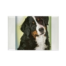 PopArt Puppy Rectangle Magnet