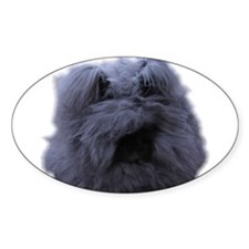 Cute Angora rabbit Decal