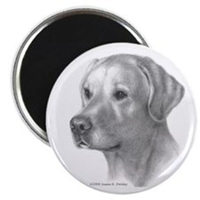 Yellow Lab Magnet