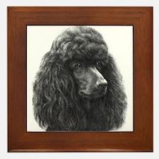 Black or Chocolate Poodle Framed Tile