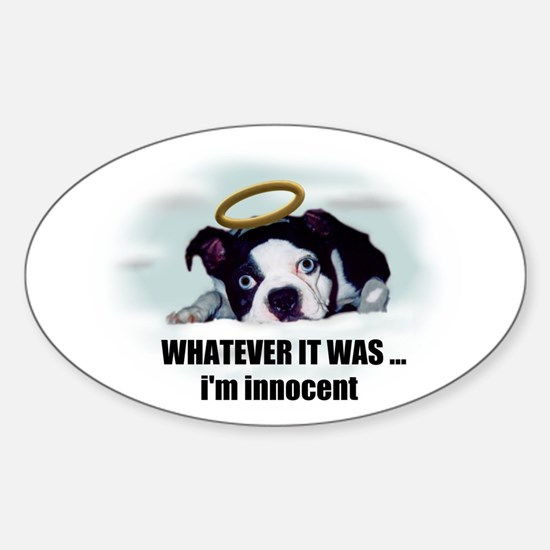 WHATEVER IT WAS IM INNOCENT Oval Decal