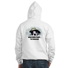 BOSTONS ARE COOL Hoodie