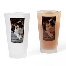 Calico Kitty Pint Glass