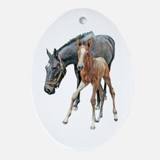 MARE & FOAL Oval Ornament