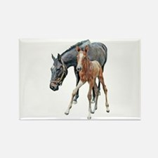 MARE & FOAL Rectangle Magnet