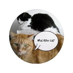 Orange Tabby Cat Humor 3.5