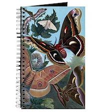 Moths Journal