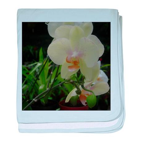 Orchid II baby blanket