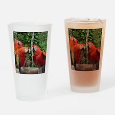 Scarlet Macaws Pint Glass