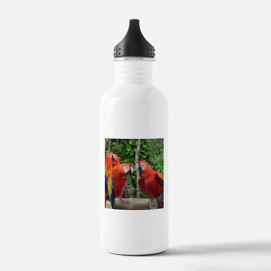 Scarlet Macaws Water Bottle