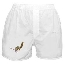 Squirrel with Banjo Boxer Shorts