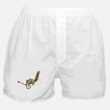 Squirrel with Banjo Boxer Shorts