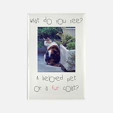 Beloved pet or fur coat? Rectangle Magnet