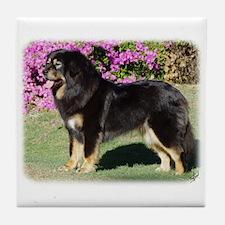 Tibetan Mastiff AA019D-101 Tile Coaster