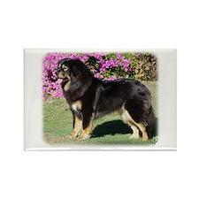 Tibetan Mastiff AA019D-101 Rectangle Magnet