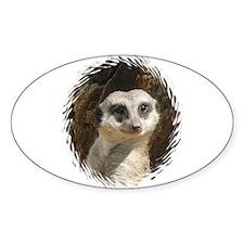 Cute Meerkats Decal