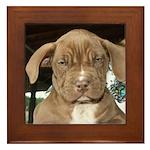 Puppies! Framed Tile