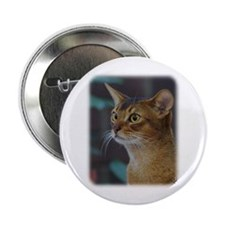 """Abyssinian Cat AA025D-018 2.25"""" Button"""